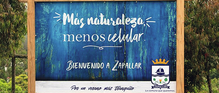 Campaña Zapallarina
